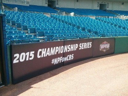NationalProFastPitchPads2