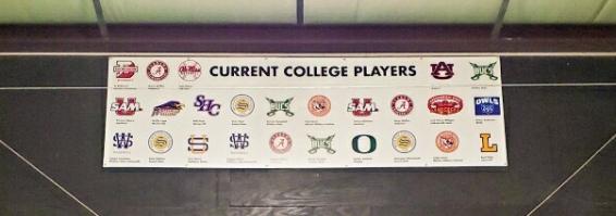 HooverBaseball_collegeplayers