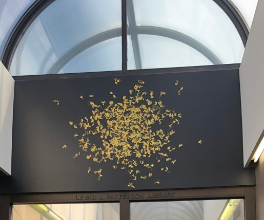 BSC_swarm