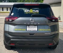 Chorus_gray_back